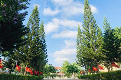 Một số hình ảnh Đại hội Chi bộ Trường THPT Phan Đình Phùng lần thứ IV, nhiệm kỳ 2020-2025